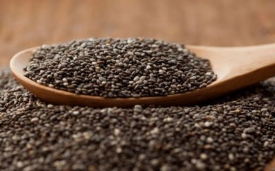 All About The Chia Seed