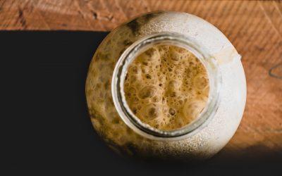 Activating a Gluten-Free Sourdough Starter